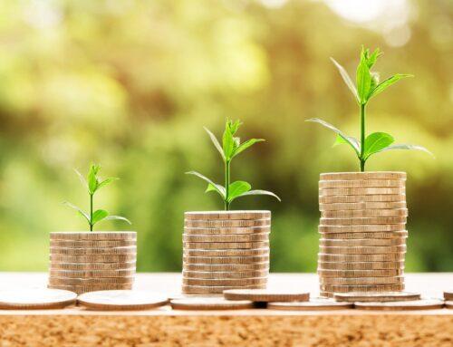 Pourquoi et comment investir responsable quand on est freelance ?